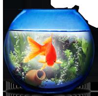 akvarium.png